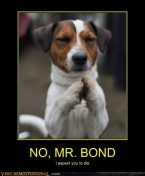 b -demotivational-posters-no-mr-bond1