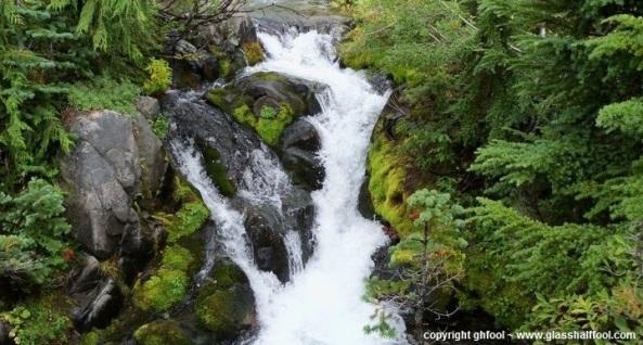 Mt. Rainier Stream