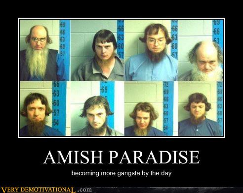 23-demotivational-posters-amish-paradise